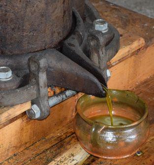 Olejarnia Zagłoby - pokazy tłoczenia tradycyjnego oleju