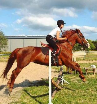 Nauka jazdy konnej z instruktorem